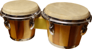 bongos adult music teaching