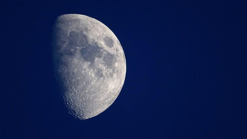 bach learning under moonlight